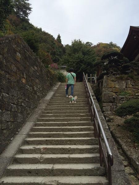 階段おとー