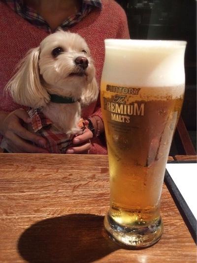 ビールとらっくん