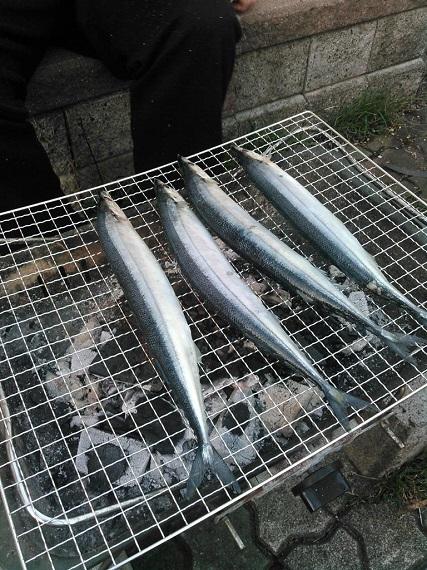秋刀魚も焼かれる