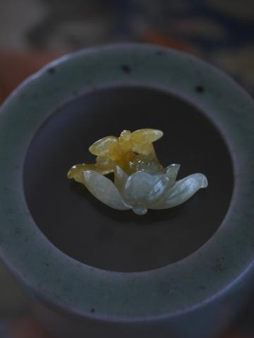 黄トンボ (2)