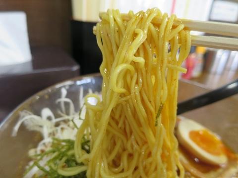 am-hiyashi8.jpg