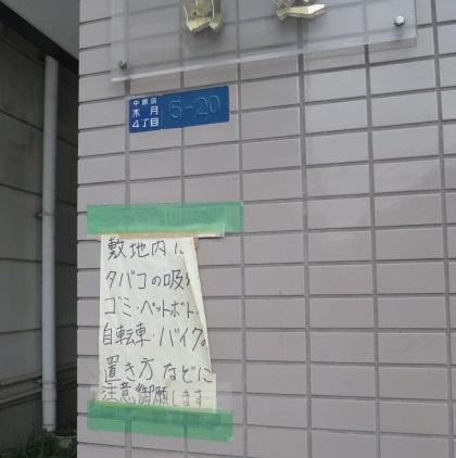 ms-butaboshi3.jpg