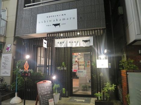 ushiwaka1.jpg