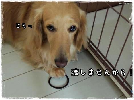 mimi8.jpg