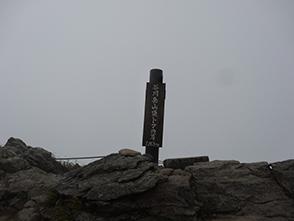 159527.jpg
