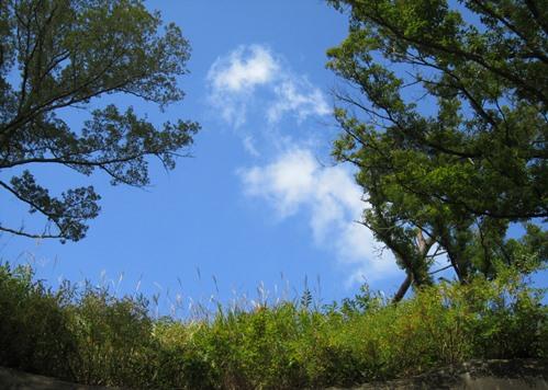深入山の青空