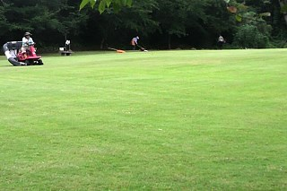 20150904_lawn.jpg