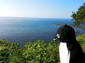 20150809-ICOCA ペンギンさんより (1)