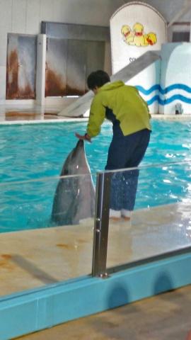 20150908-おたる水族館 (4)-加工