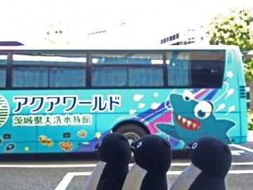 20150912-バス (3)-加工
