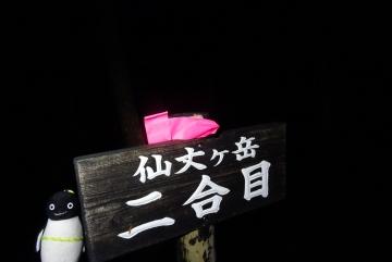 20150921-2-仙丈ヶ岳 (2)