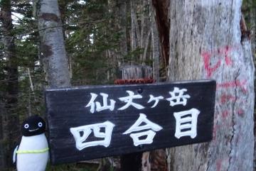 20150921-2-仙丈ヶ岳 (4)