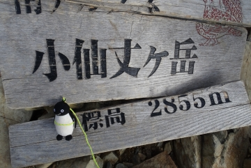20150921-2-仙丈ヶ岳 (18)