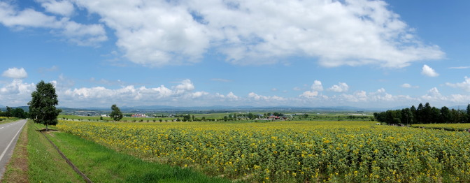 ひまわりの里から麓の景色を望む(標準パノラマ)