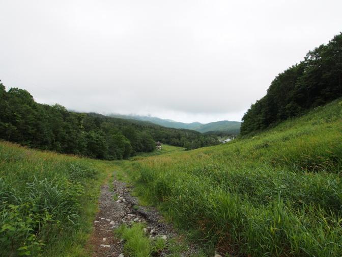 登山道から麓を見下ろす