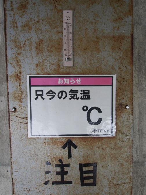 注目!ただいまの気温は16℃