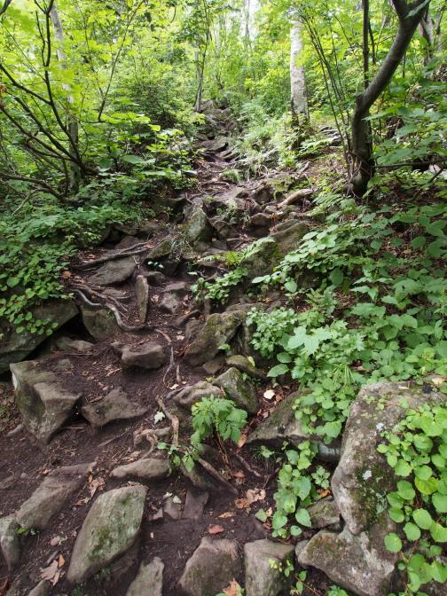 ゴツゴツした岩の山道