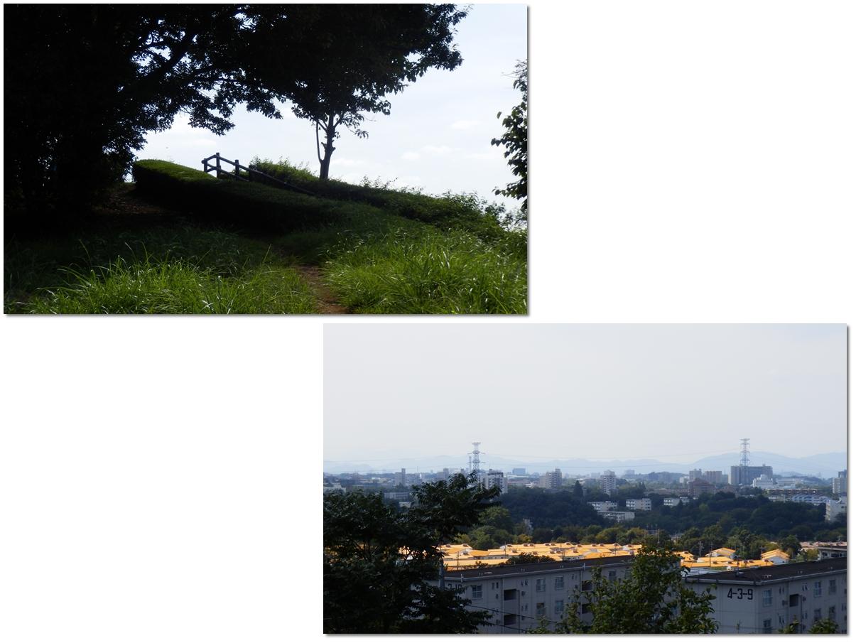 page横山の道7