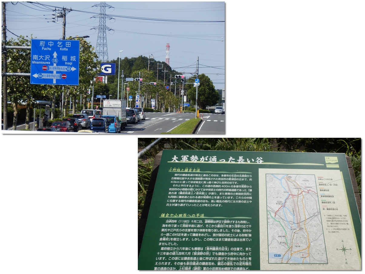page横山の道9