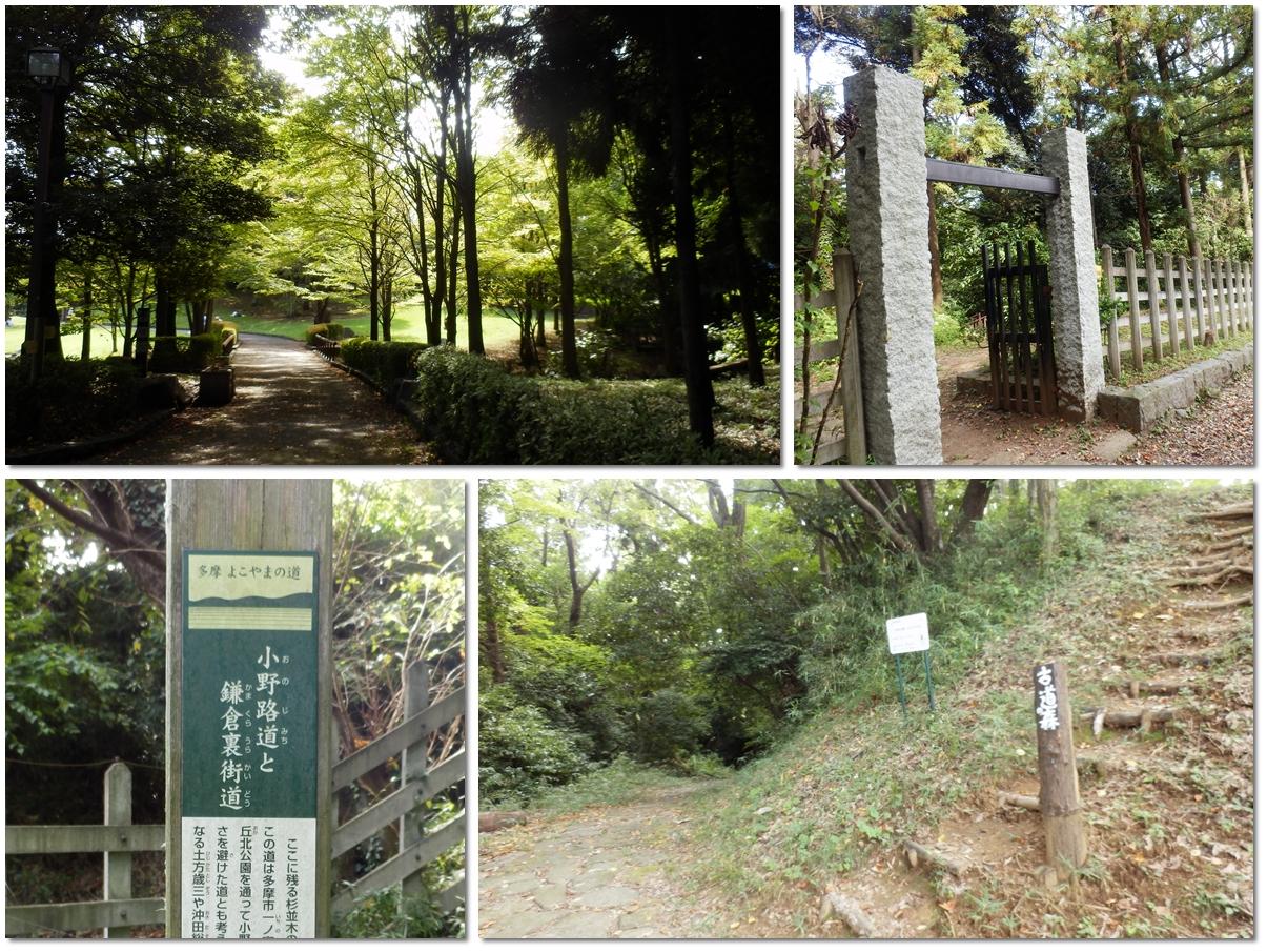 page横山の道90