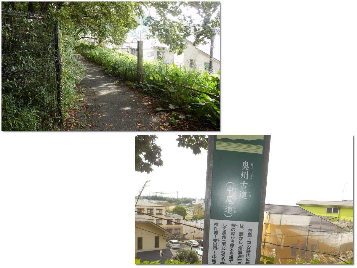 page横山の道91