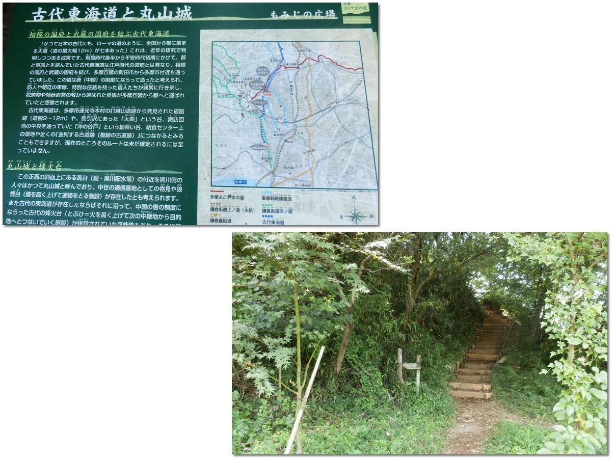 page横山の道98