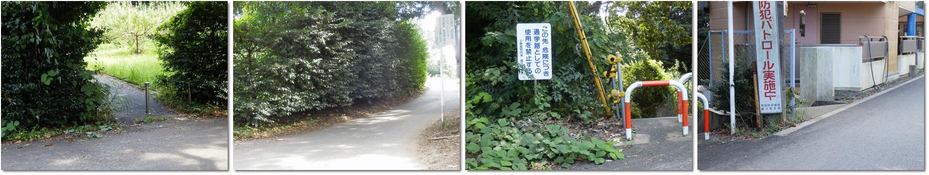 横山の道horz2
