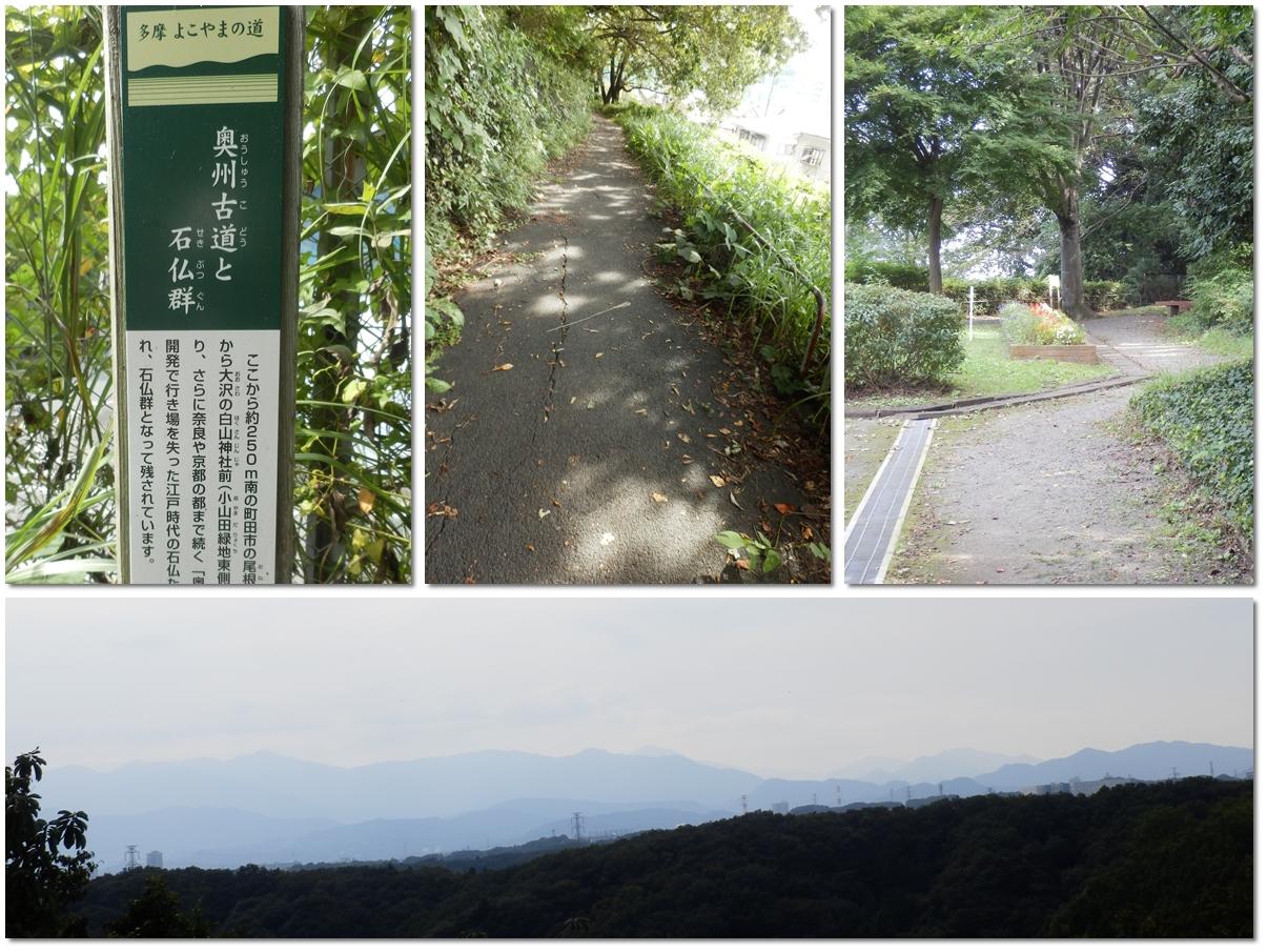 page横山の道81