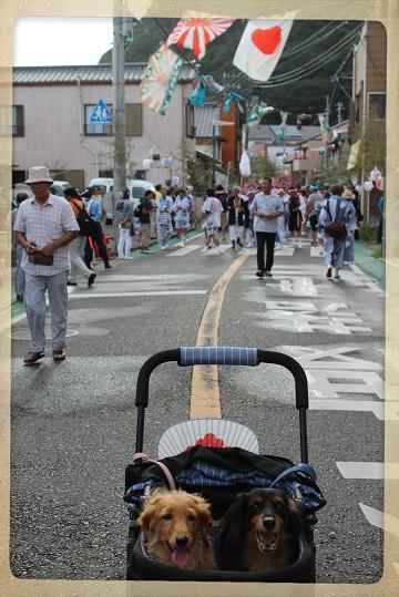 H27082310式年鳥居木曳祭