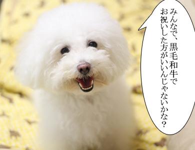 IMG_6934-2.jpg