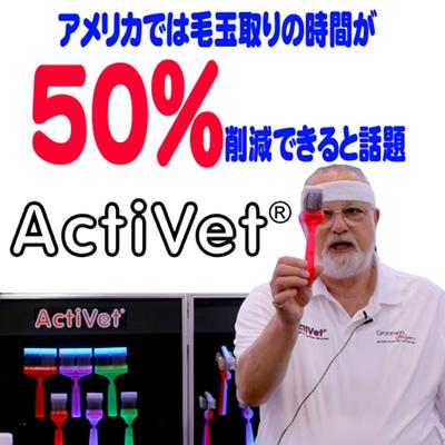 activ1.jpg