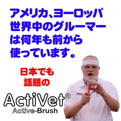 activ5.jpg