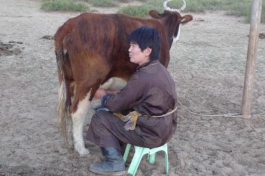20151003乳搾り
