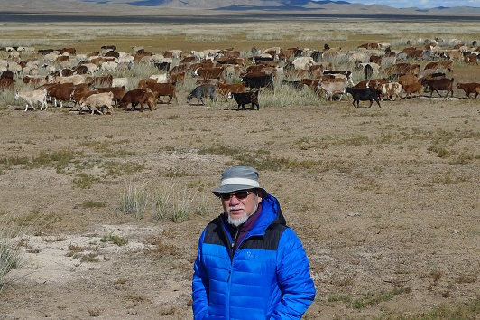 20151003羊と山羊