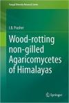 Wood_rotting_.jpg