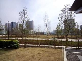 20150328芝浦の桜(その18)