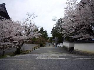 20150403南禅寺(その18)