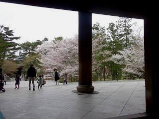 20150403南禅寺(その23)