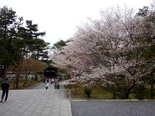 20150403南禅寺(その24)