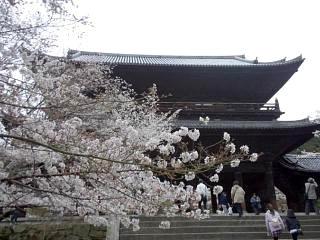 20150403南禅寺(その25)