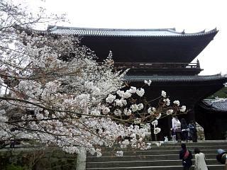 20150403南禅寺(その26)