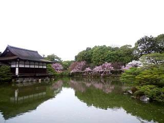20150403平安神宮(その33)