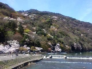 20150404嵐山渡月橋(その9)