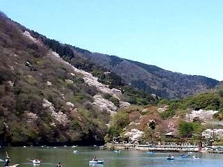 20150404嵐山桜(その40)