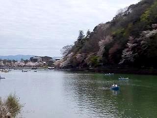 20150404竹林~桂川(その19)