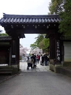 20150404仁和寺(その1)