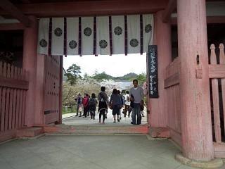 20150404仁和寺(その7)