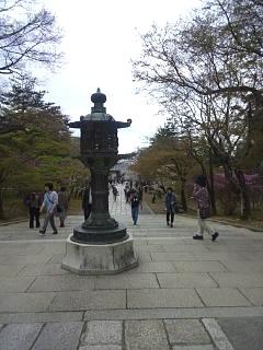 20150404仁和寺(その26)