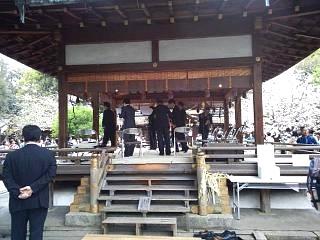 20150404平野神社(その21)