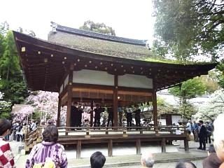 20150404平野神社(その29)